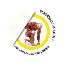 BLACKROLL® Anatomy